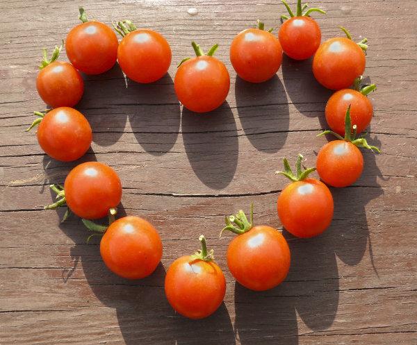 tomato heart small (1) resized 600