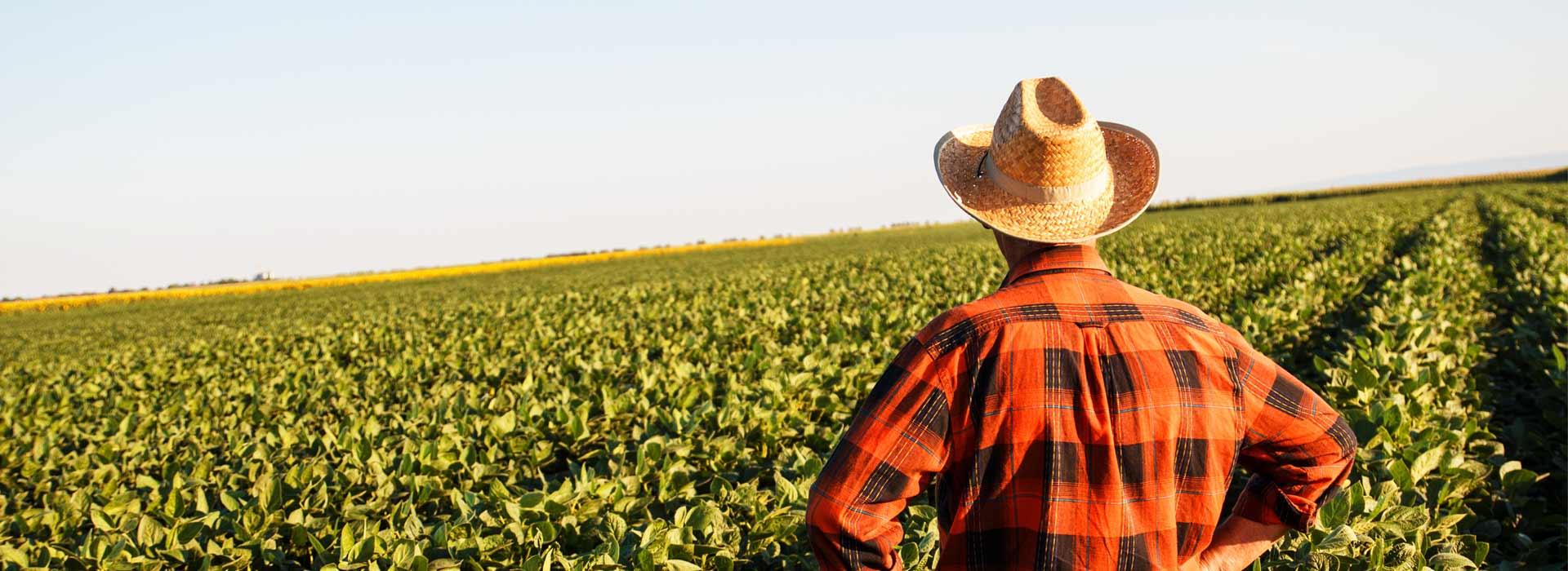banner-farmer-field