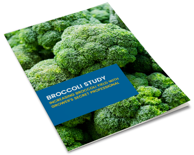 ebook-mockup-broccoli-study-v2.png