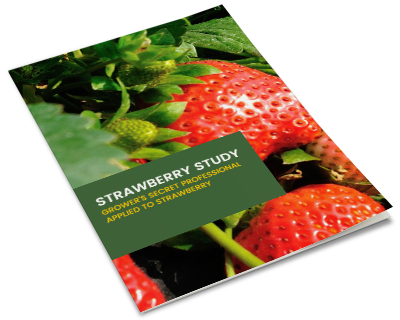 ebook-mockup-strawberry-study-v2.png