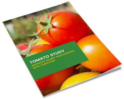 ebook-mockup-tomato-study-v2.png