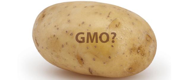 gmo-potato-2.png