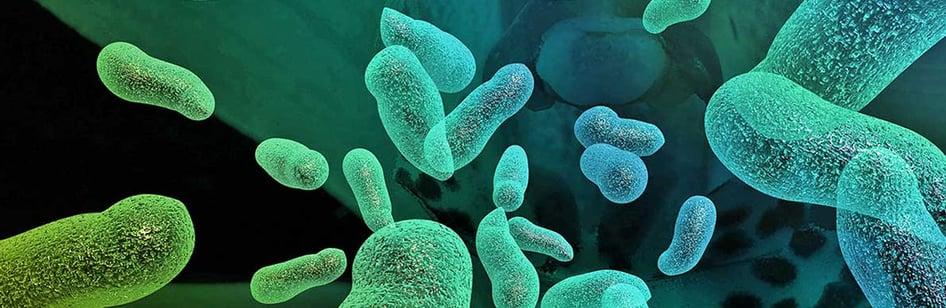 microbes-banner-4.jpg